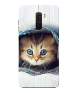 Cute Cat Xiaomi Poco F1 Mobile Cover