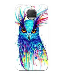 Cute Owl Moto G5s Plus Mobile Cover
